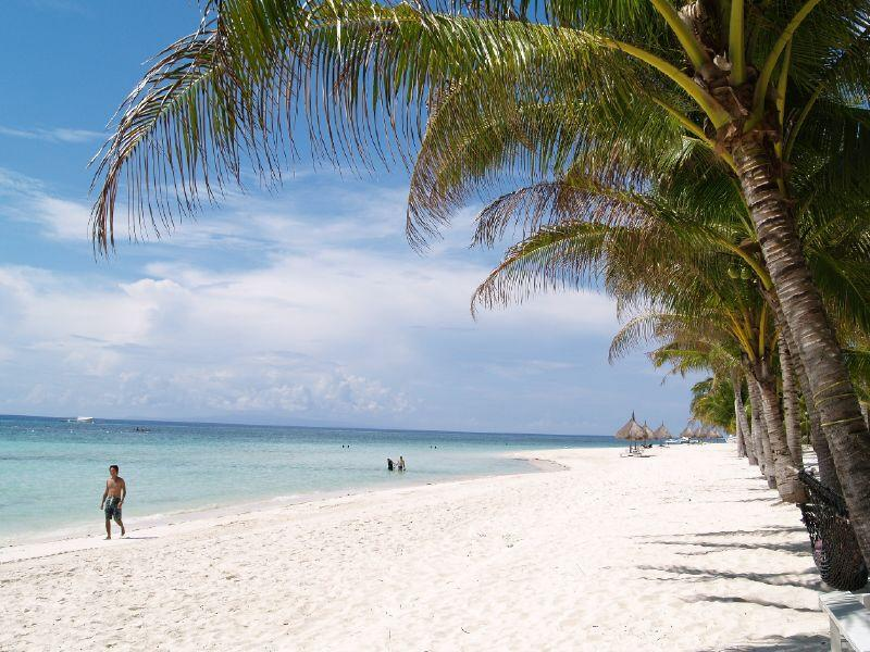 Panglao Beach Hotels
